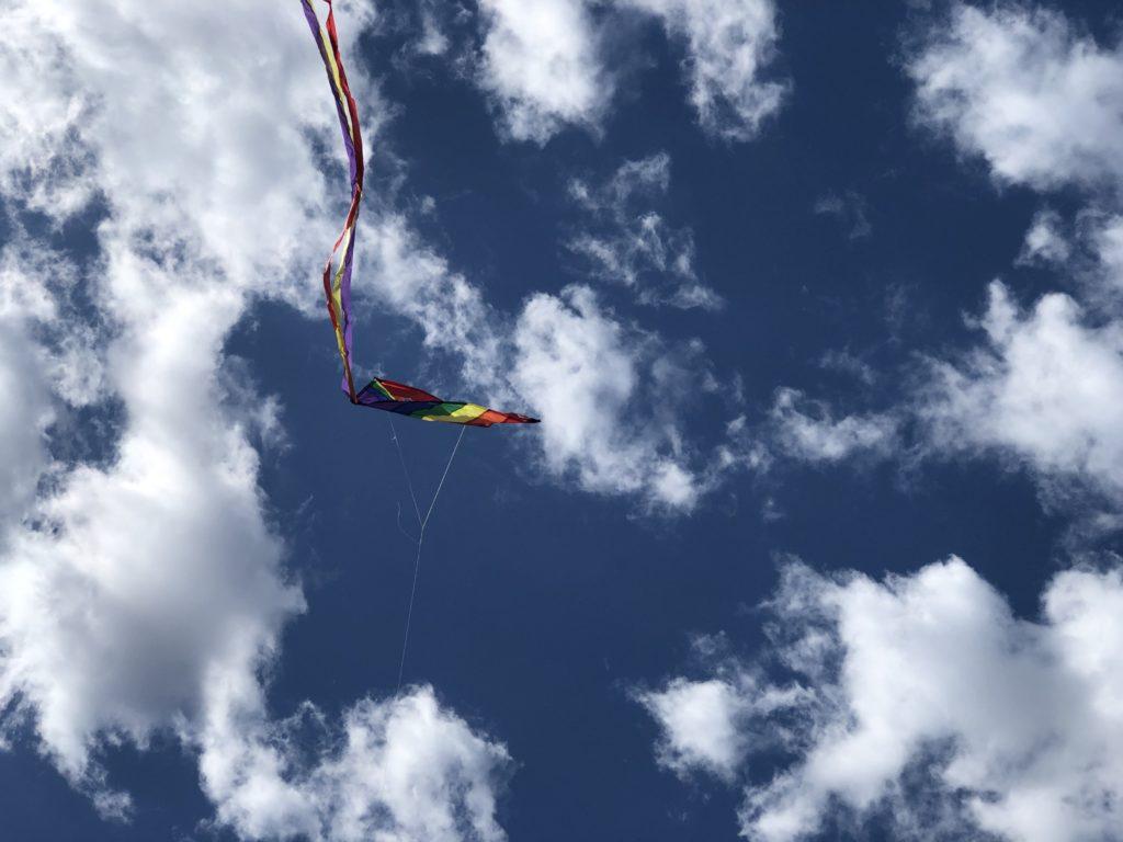 Kite Sans Payload